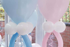 Gender reveal displays